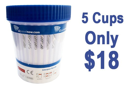 5 Cups Only $18