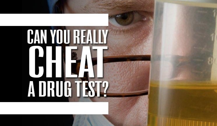 Can You Really Cheat a Drug Test?