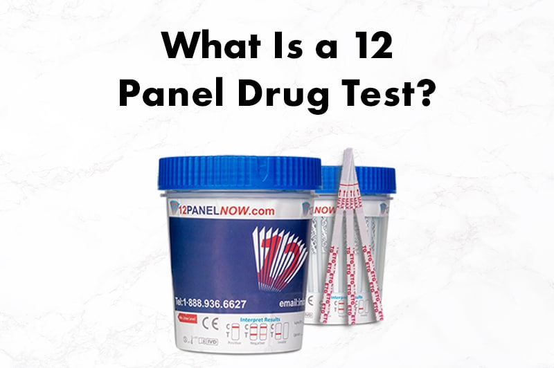 What Is a 12 Panel Drug Test?