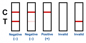 Results of the test - negative, positive or invalid