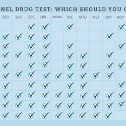 Panel Drug Test Which Should You Choose