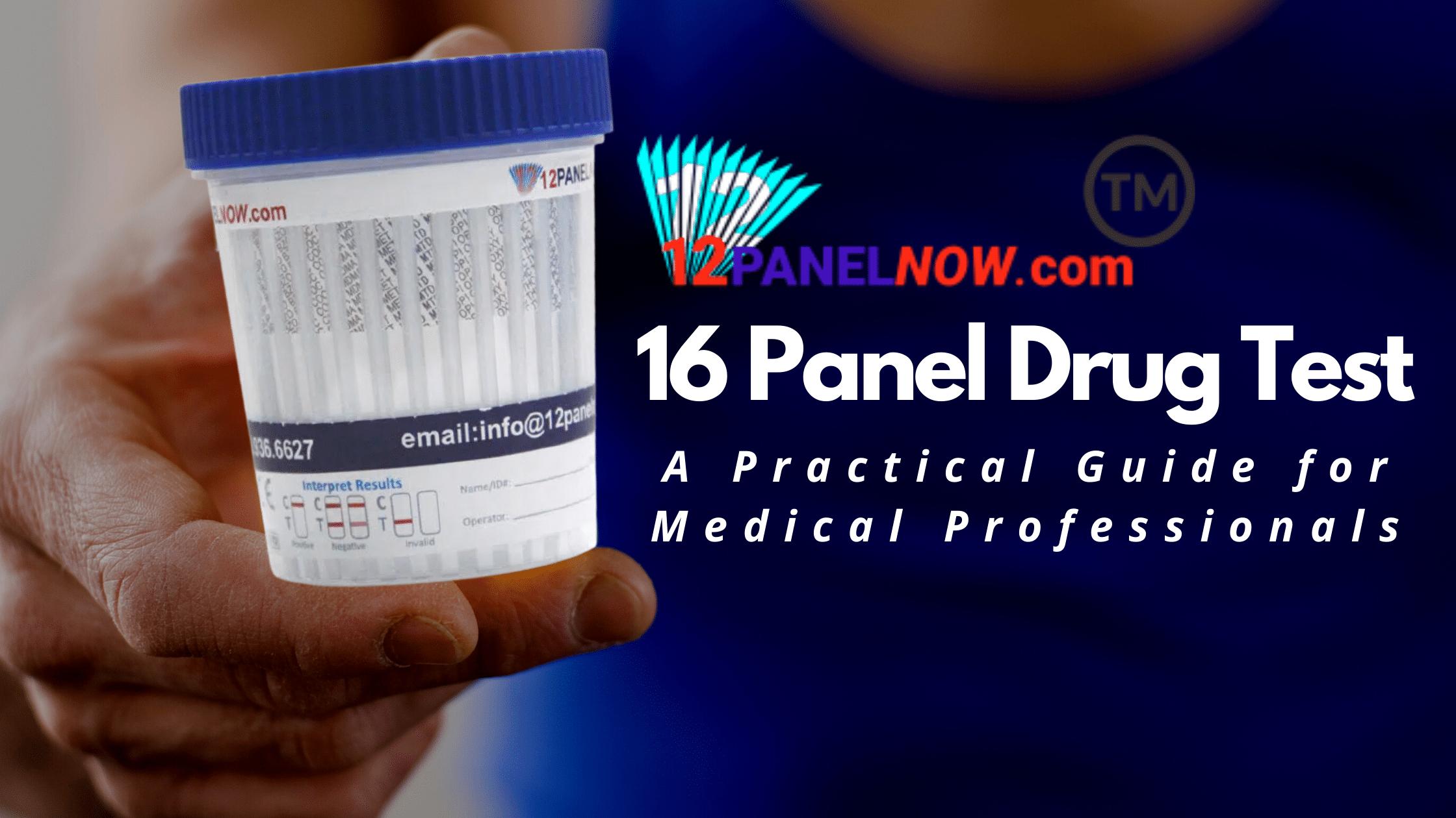 16 Panel Drug Test Blog Post